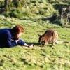 Tasmanie114A.jpg